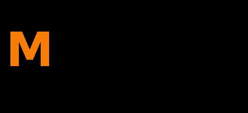 MSerwis